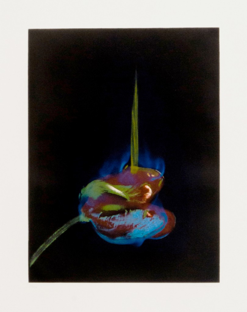 Mat_Collishaw-The_Poisoned_Page_(photo_etching)